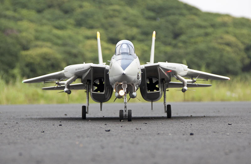 Freewing F-14 Tomcat Twin 80mm EDF Jet PNP RC Airplane