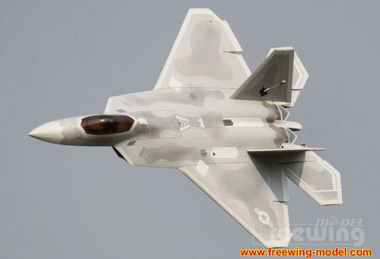 Freewing F-22 Raptor Ultra Performance 8S 90mm EDF Jet airplane