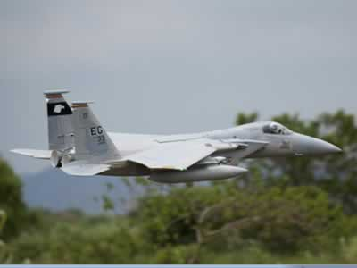 Freewing F-15C Eagle Super Scale High Performance 90mm EDF Jet - PNP